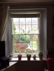 Tilt in Balanced vertical sliding sash secondary windows in a coastal setting